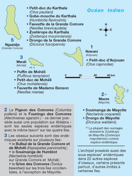 Comores_Map