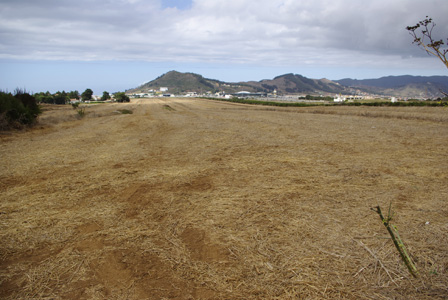 Canaries_Los_Rodeos_plains