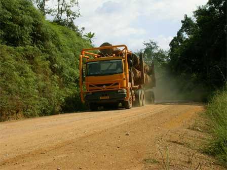 Logging_truck_Gabon