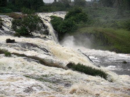 Ivindo_National_Park_Gabon