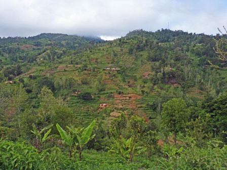 Taita_Hills_Kenya