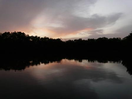 Saloum_River_Senegal