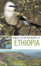 Where_to_watch_Birds_in_Ethiopia