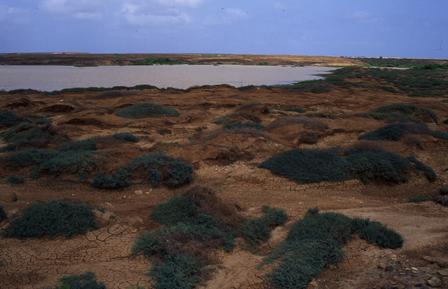 Ribeira_da_Madama_Sal_Island_Cape_Verde