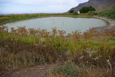 Tejina_artificial_pond_north_east_Tenerife