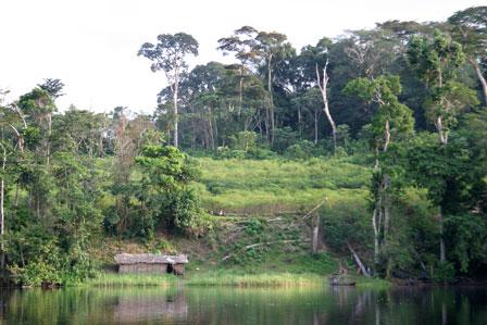 Equateur_DRC