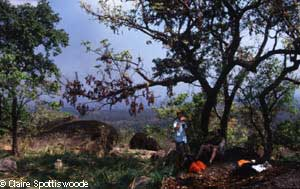 Ethiopia-Gambella_National_Park