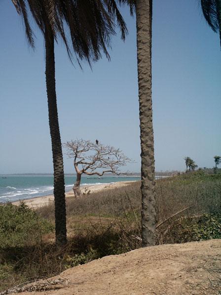 Tanji_Reserve_Gambia