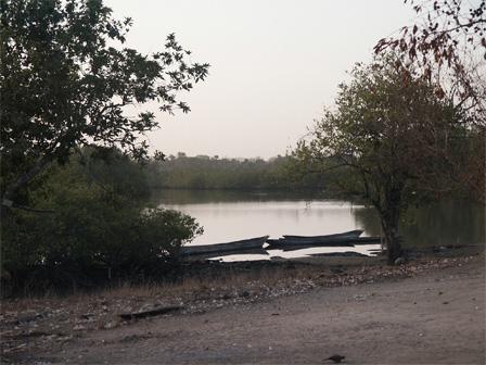 Gambia_Tumani_Creek