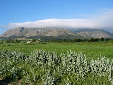 Djebel_Bent_Saidane_Tunisia