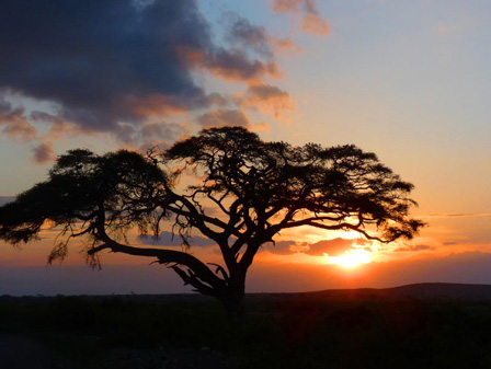 Kenya_Sunset_on_Amboseli