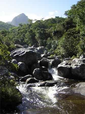 River_Malawi