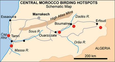 Morocco_birding_map