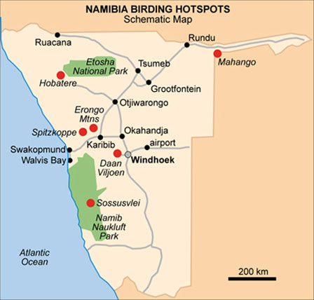 Namibia_birding_map