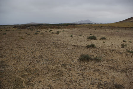 Plains_of_Tiagua_Tinajo_Lanarote