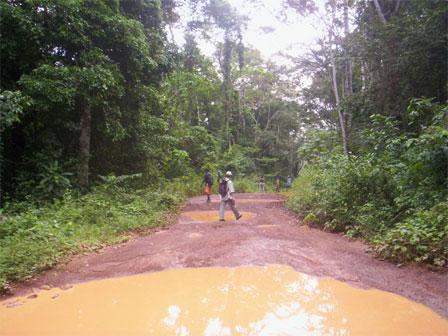 Gola_West_Sierra_Leone