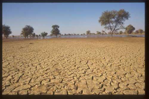 Tabalak_wetland_Niger