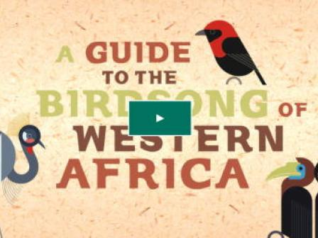 A Guide to the Birdsong of Western Africa